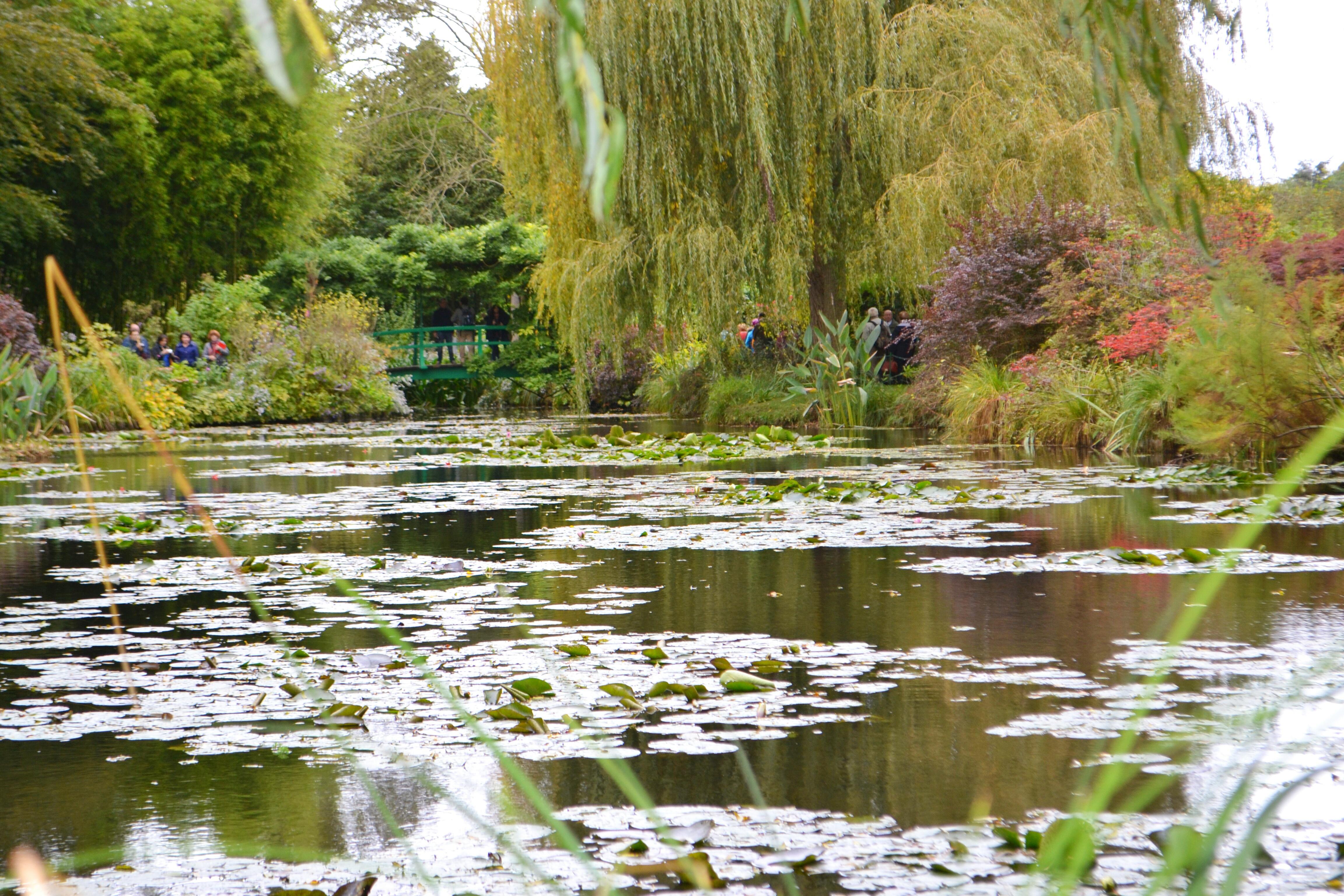 Chasing inspiration through Monet\'s garden. – Elizabeth Linder